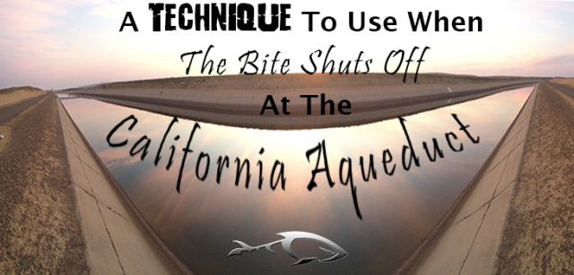 A Technique To Use When The Bite Shuts Off At The California Aqueduct