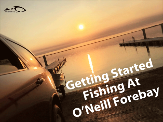 Getting Started Fishing At O'Neill Forebay