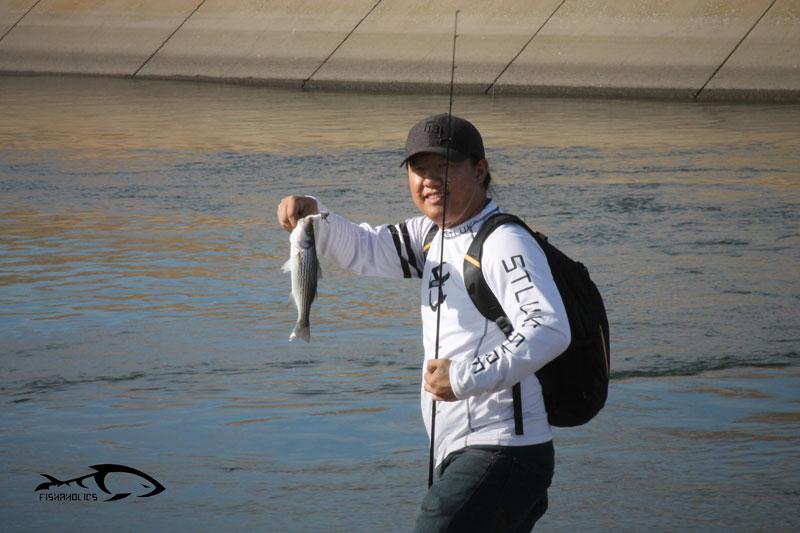 california-aqueduct-striper-fishing