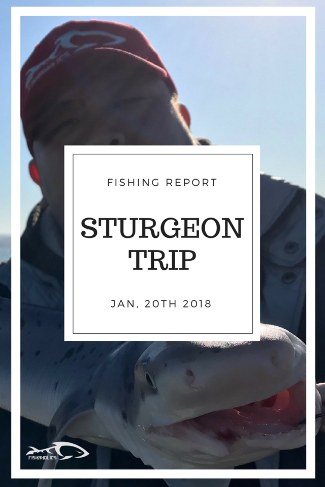 Fishing Report: Sturgeon Trip 1-20-18