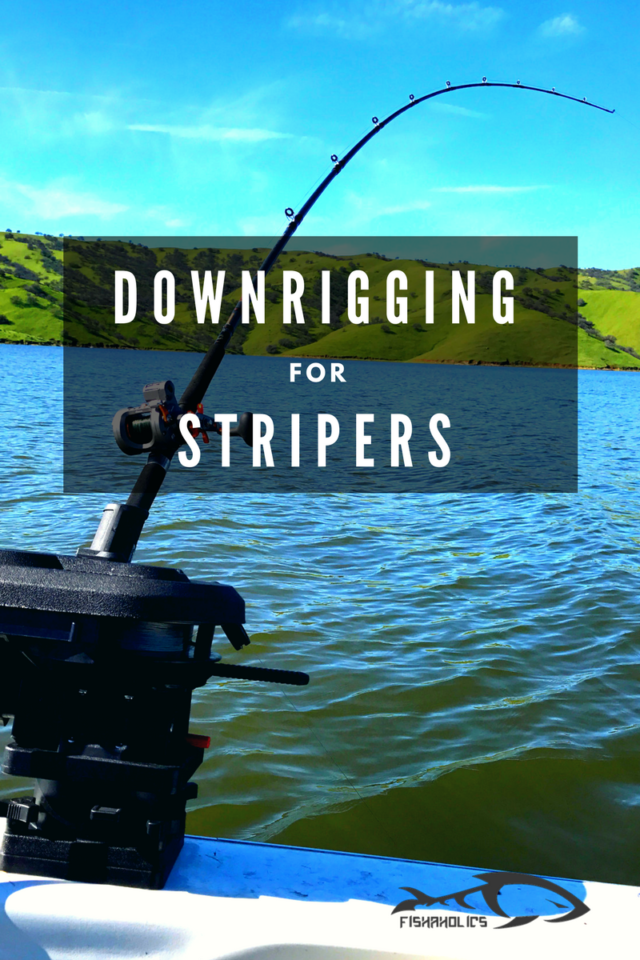 Downrigging For Stripers