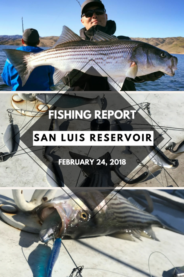 Fishaholics for San luis reservoir fishing