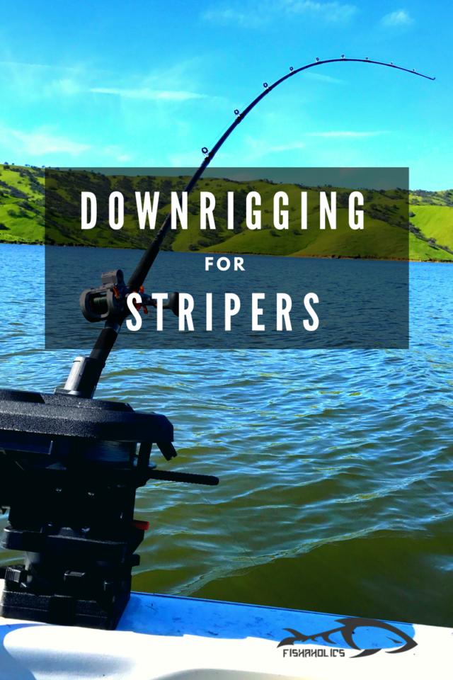 Downrigging For Stripers | FishAholics